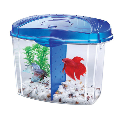 AQUEON - Betta Bowl Aquarium Kit Blue