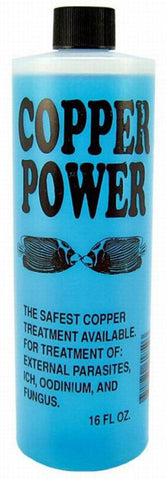 Endich - Copper Power Blue For Saltwater