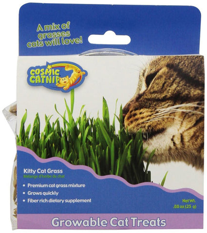OUR PETS - Cosmic Kitty Cat Grass Kit