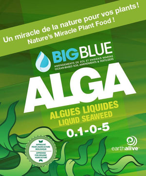 Big Blue Alga Bio-Fertilizer