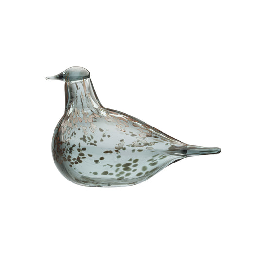 Iittala Grey Dove