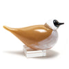 2019 Iittala Hot Shop Bird Dipper