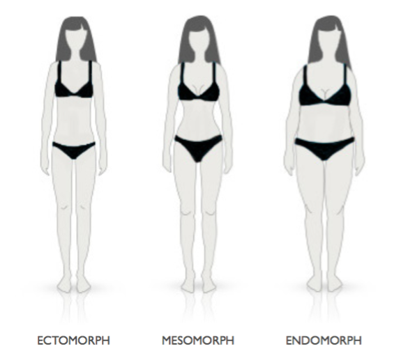 Body Types – Luxe Fitness