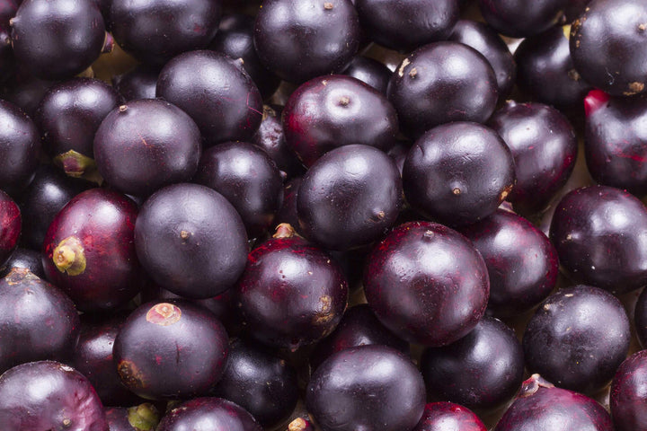 Do Acai Berries Really Help with Weight Loss?