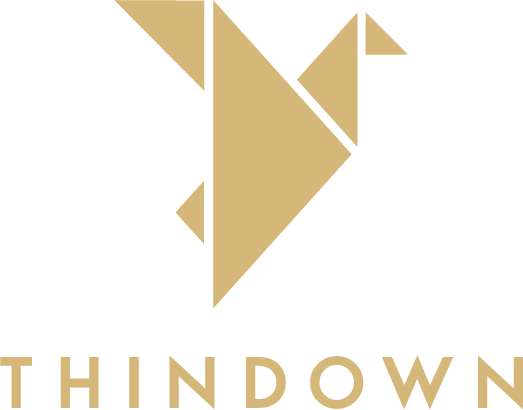 Thindown logo