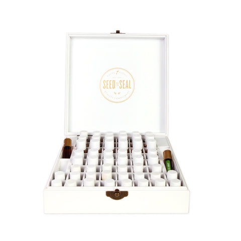 Glass Roller Bottle Set