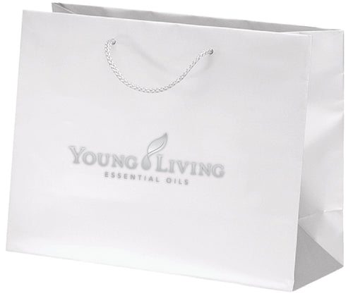 Large Gift Bags- Set of 3