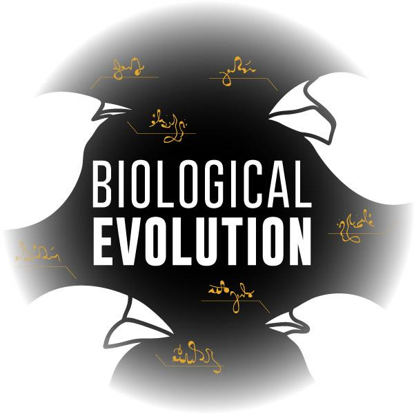 Virtual Reality Science At-home Tutor: Biological Evolution (8LS)