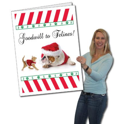 Giant Christmas Card (Goodwill to Felines), W/Envelope - Stock Design