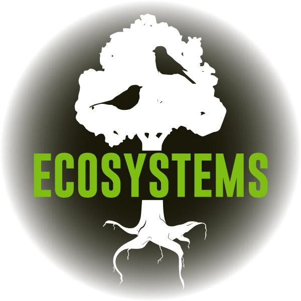 Virtual Reality Science At-home Tutor: Ecosystems (5LS)
