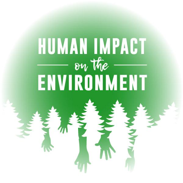 Virtual Reality Science At-home Tutor: Human Impact on the Environment (8ES)