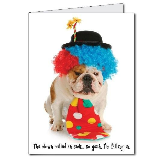 2'x3' Happy Birthday Funny Clown Dog Giant Greeting Card w/Envelope