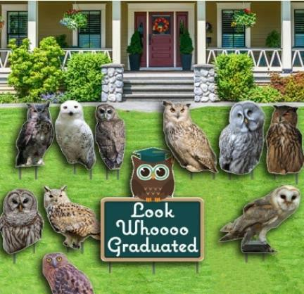 Graduation Yard Decoration- Look Whoooo Graduated - Owls - FREE SHIPPING