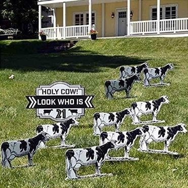 "The front yard of a house with several cows out front around a sign that says, ""Holy Cow! look who is 40"""