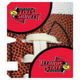 Illinois State Magnetic Mailbox Cover (Design 6)