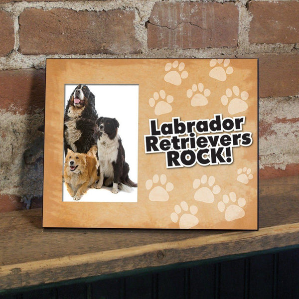 A picture frame with a dog
