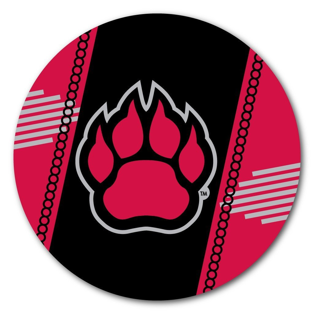 Northern Illinois University Coaster Set - Fun Designs - Set of 4