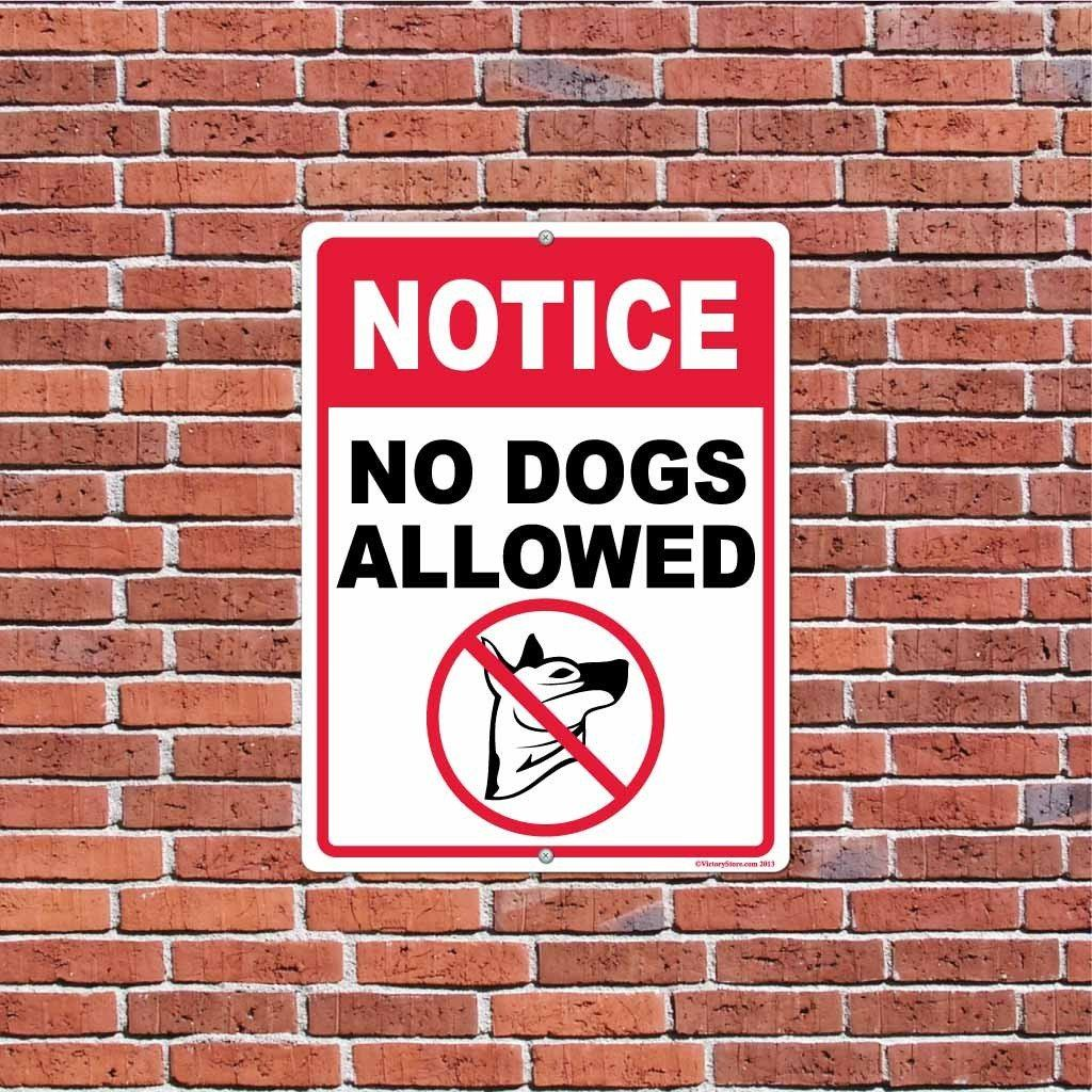 "A yard sign that is hanging from a brick wall that says ""No Dogs Allowed"""
