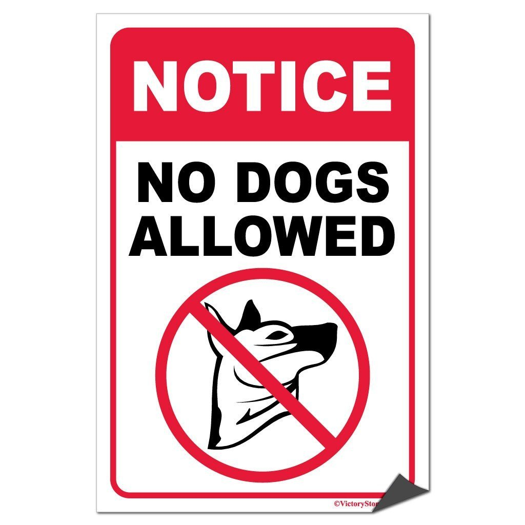 "A ""No Dogs Allowed"" sticker"