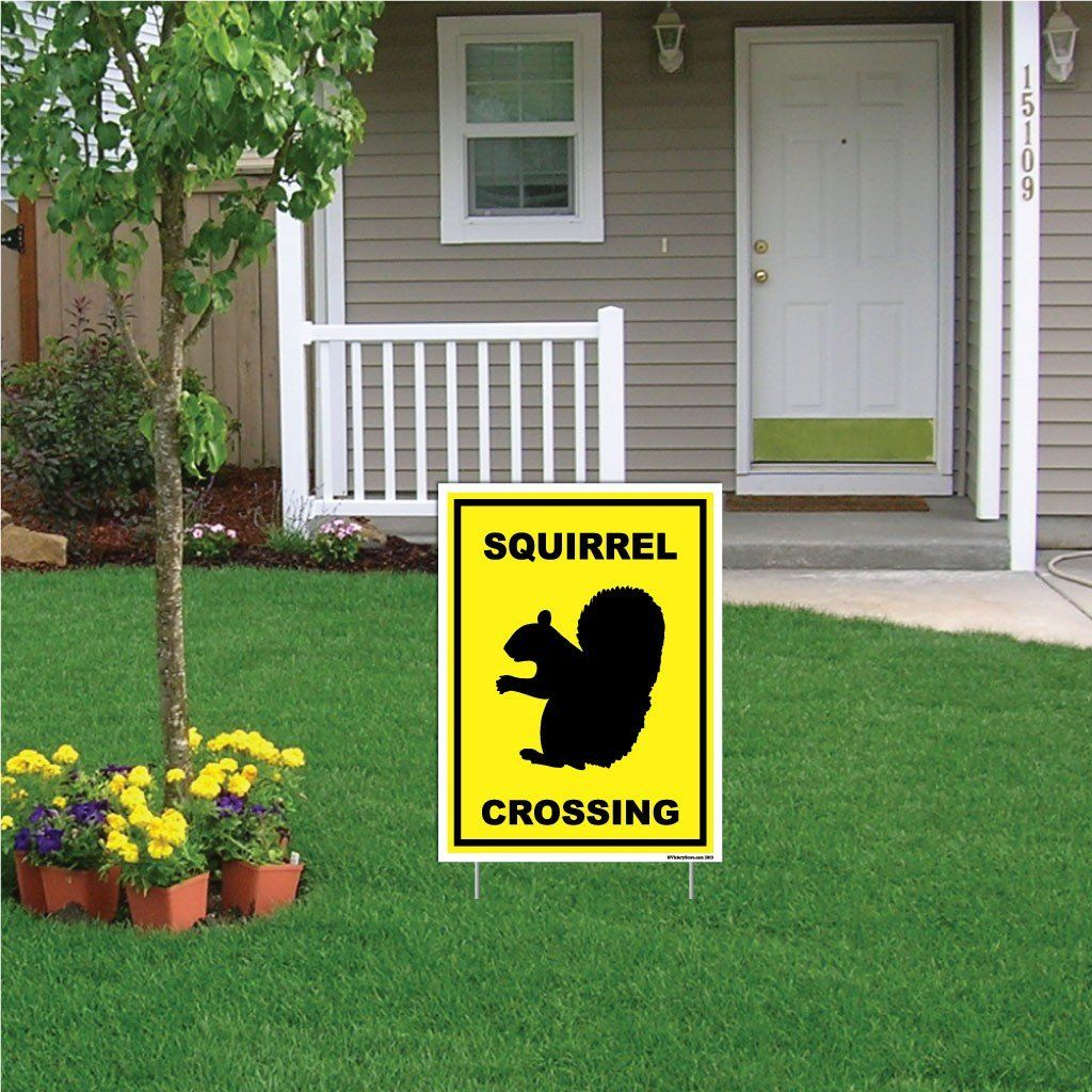 "A yard sign that says ""Squirrel Crossing"""