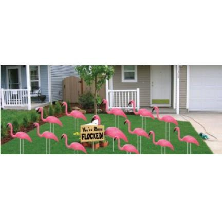 The front yard of a house that has several pink flamingos in the yard