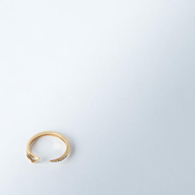 Salome Eternity Ring