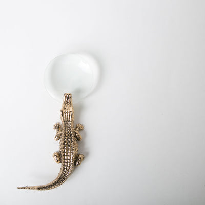 crocodile holding magnifying glass by L'Objet at Secret Location