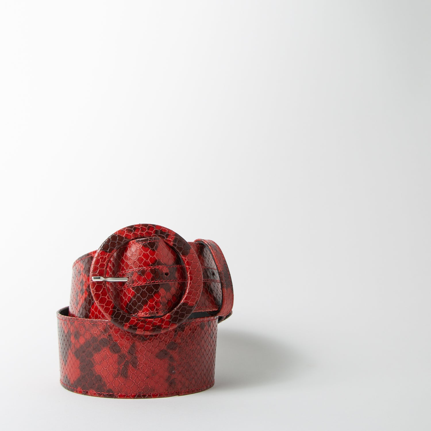 Snake printed belt in red by Attico at Secret Location Concept Store