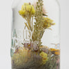 Antique Pharmacy Apothecary Bottle - #2 Acid Acetic