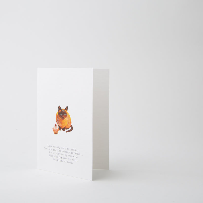 cat greeting card by Tokyo Milk at Secret Location