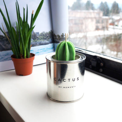 Cactus Soy Candle