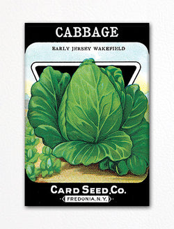 Cabbage Seed Packet Artwork Fridge Magnet