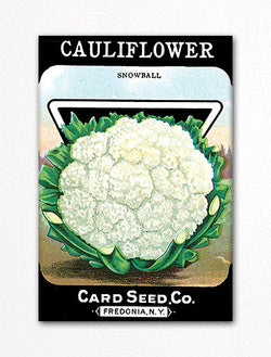Cauliflower Seed Packet Artwork Fridge Magnet
