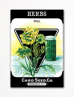 Dill Herbs Seed Packet Artwork Fridge Magnet