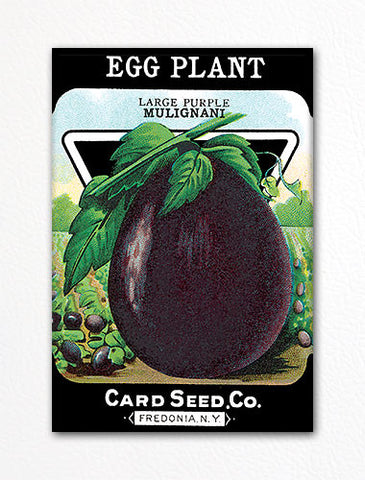 Eggplant Seed Packet Artwork Fridge Magnet