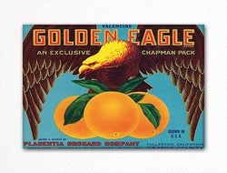 Golden Eagle Oranges Label Art Fridge Magnet