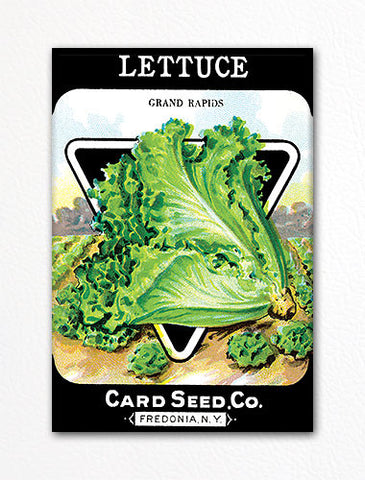 Lettuce Seed Packet Artwork Fridge Magnet