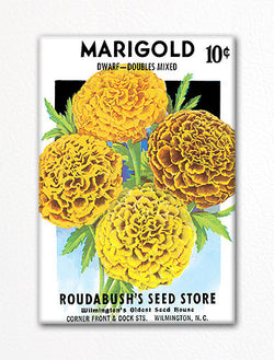 Marigold Seed Packet Artwork Fridge Magnet