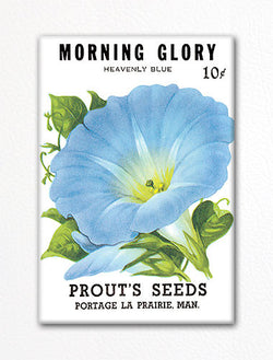Morning Glory Seed Packet Artwork Fridge Magnet