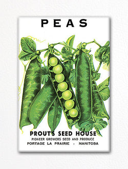 Peas Seed Packet Artwork Fridge Magnet