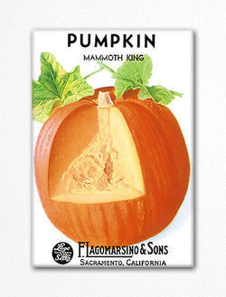 Pumpkin Seed Packet Artwork Fridge Magnet