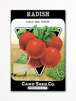 Radish Seed Packet Artwork Fridge Magnet