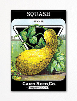 Squash Seed Packet Artwork Fridge Magnet