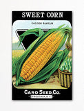 Sweet Corn Seed Packet Artwork Fridge Magnet