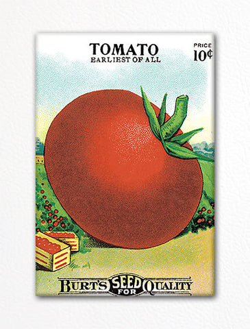 Tomato Seed Packet Artwork Fridge Magnet