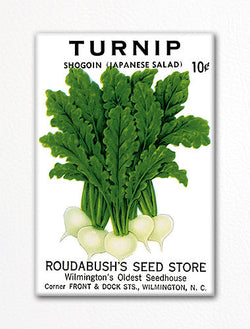 Turnip Seed Packet Artwork Fridge Magnet