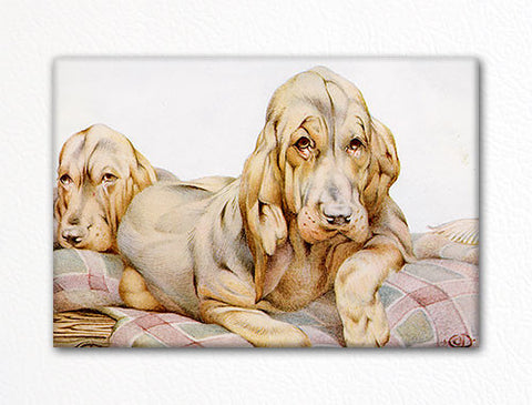 "The Bloodhounds Classic ""Baby Dogs"" Illustration Fridge Magnet"