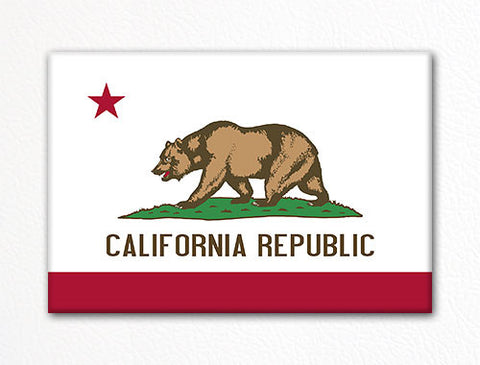 California State Flag Fridge Magnet