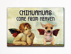 Chihuahuas Come From Heaven Fridge Magnet