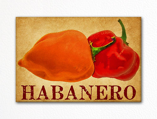 Habanero Chili Peppers Decorative Kitchen Fridge Magnet
